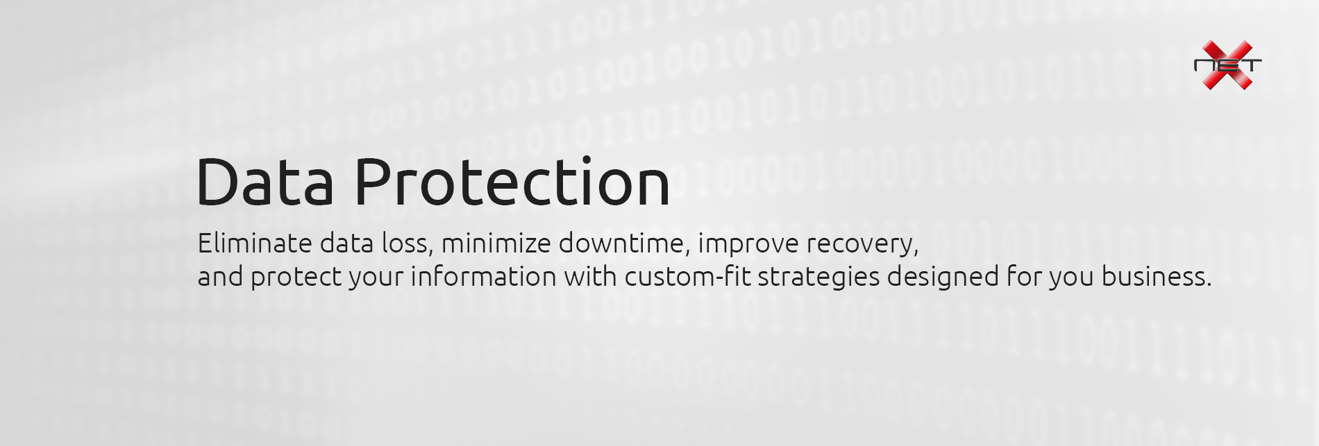 Data Protection by NetX