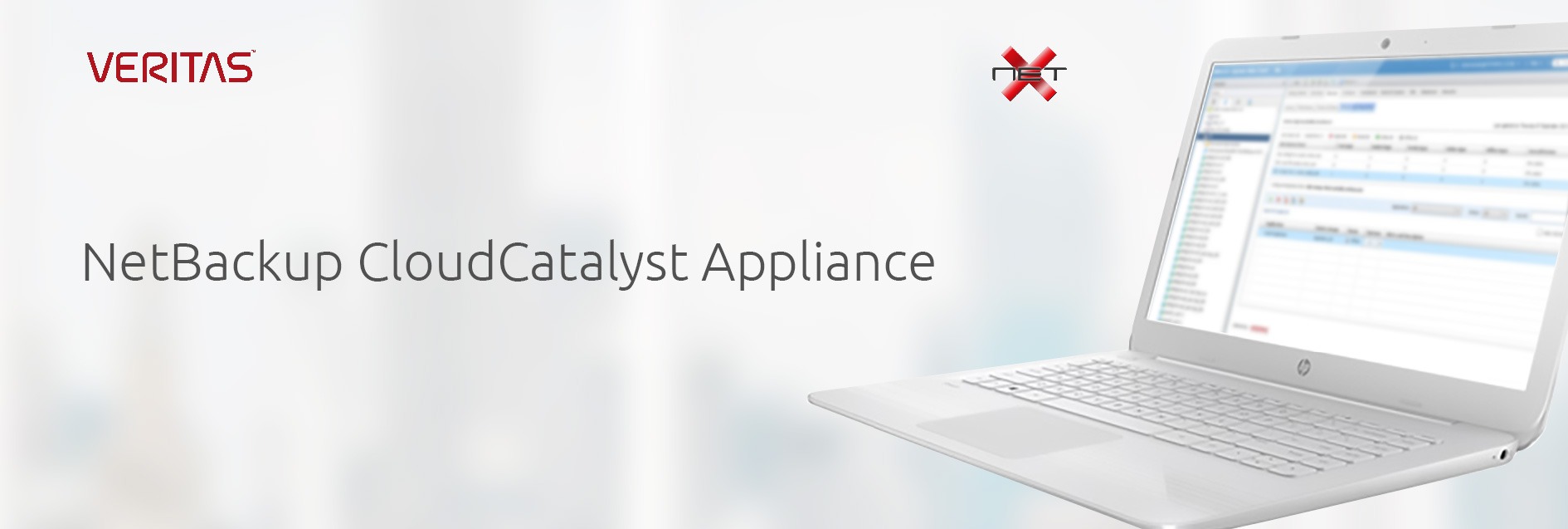 netx-veritas-cloud-catalyst-banner