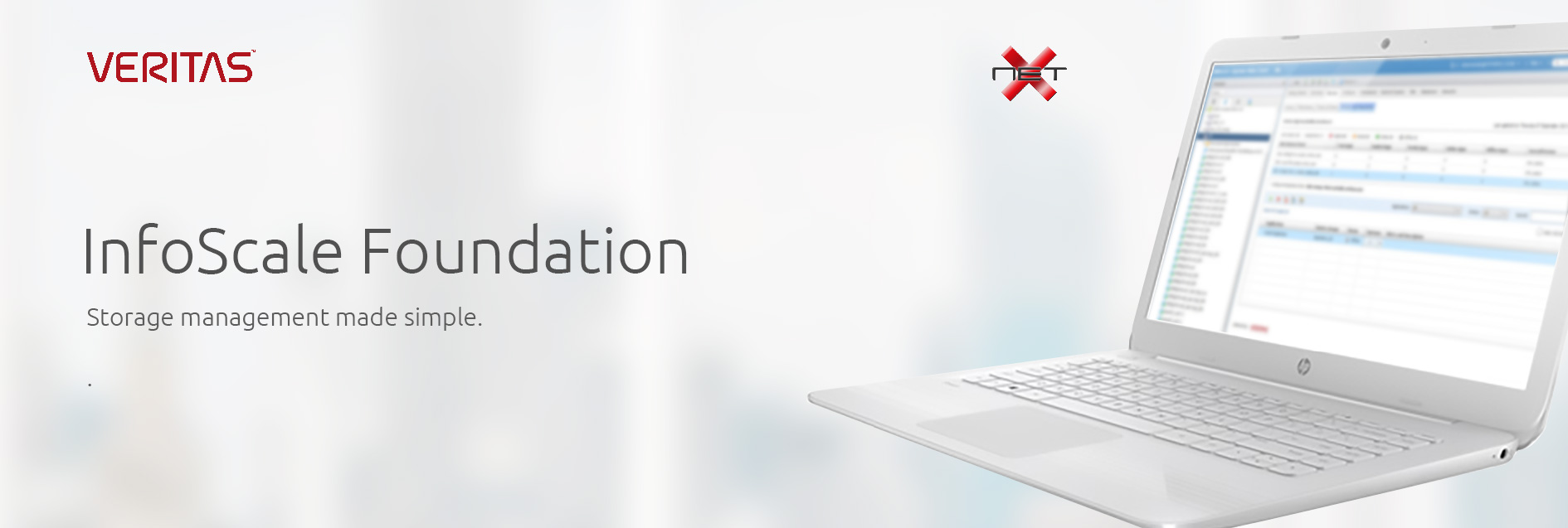 netx-veritas-infoscale-foundation services banner