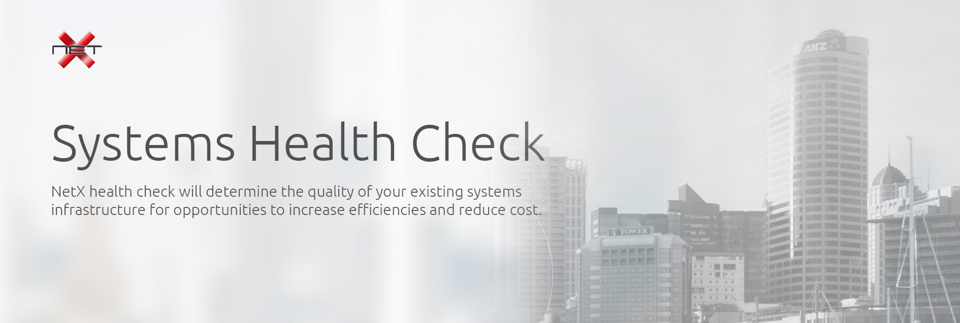 NetX System Health Check